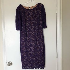 Elegant Purple Laced Dressbarn Dress